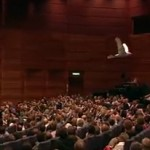 Robot that flies like a bird gets a standing ovation